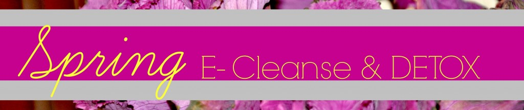 spring cleanse banner final yes yes